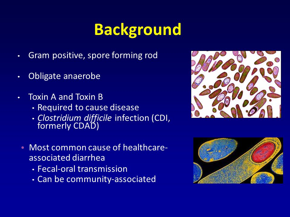 Background Gram positive, spore forming rod Obligate anaerobe