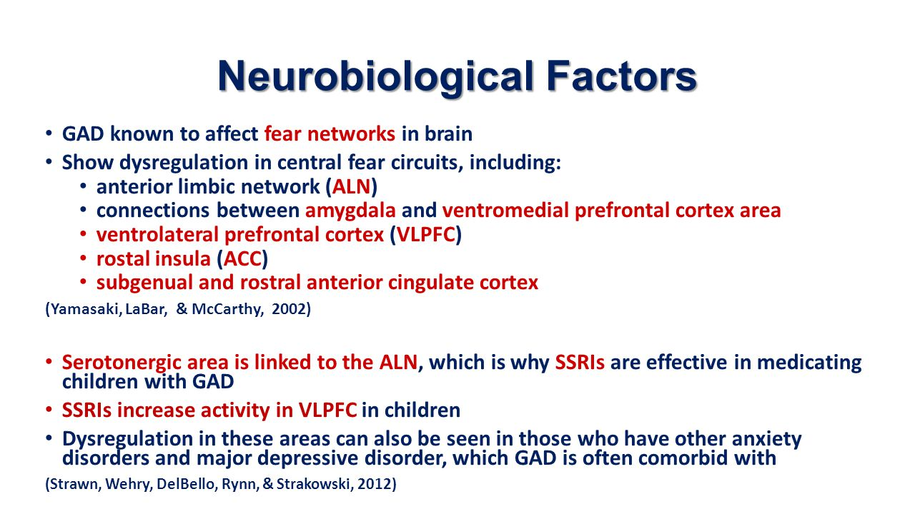 Neurobiological Factors