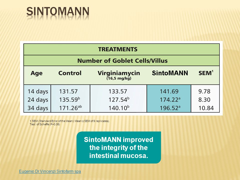SintoMANN improved the integrity of the intestinal mucosa.