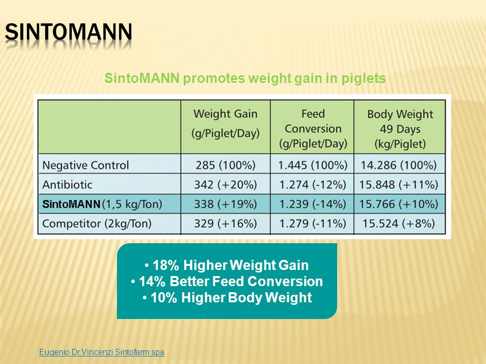 SintoMANN promotes weight gain in piglets 14% Better Feed Conversion