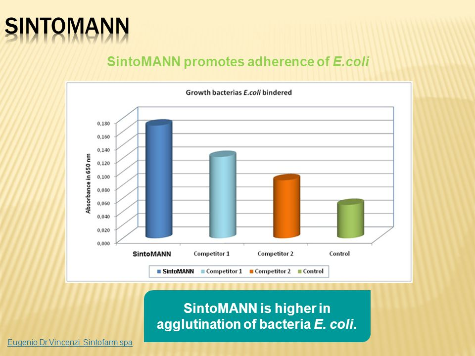 SintoMANN SintoMANN promotes adherence of E.coli