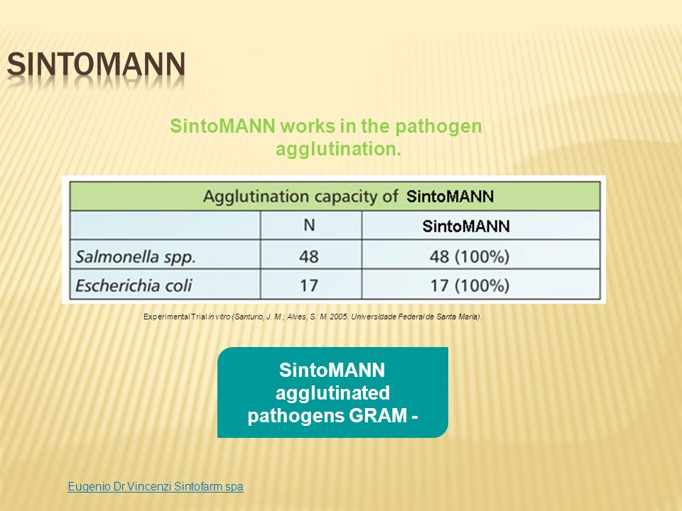 SintoMANN SintoMANN works in the pathogen agglutination.