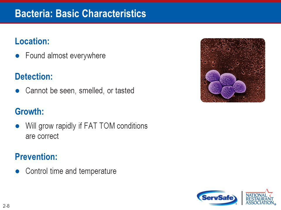 Bacteria: Basic Characteristics