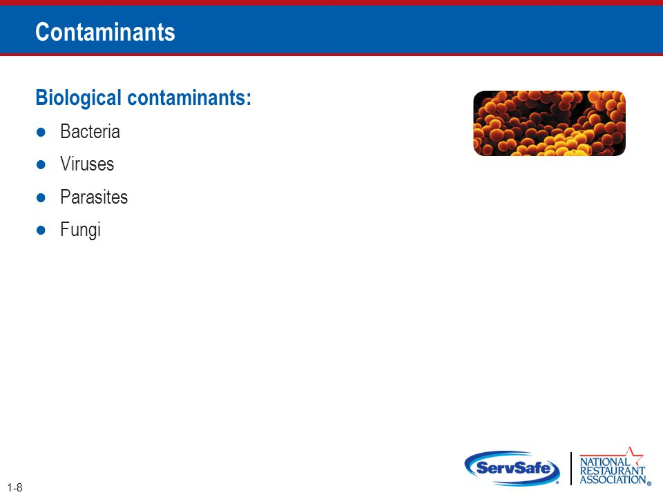 Contaminants Biological contaminants: Bacteria Viruses Parasites Fungi