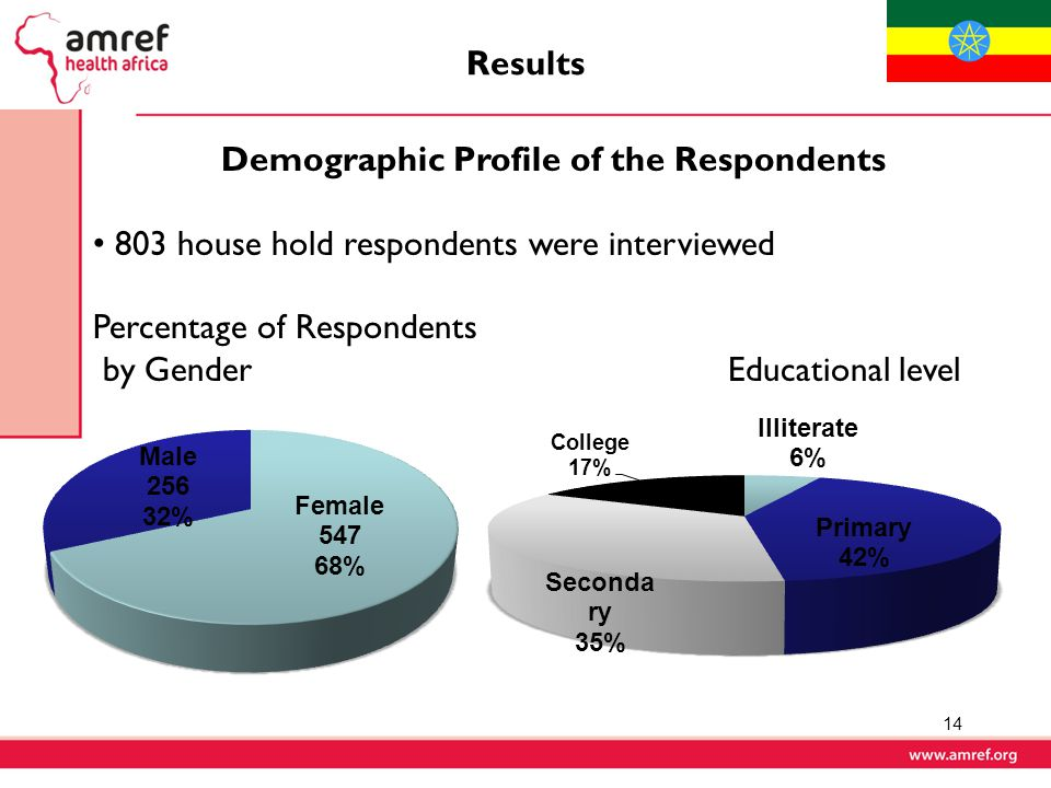 Demographic Profile of the Respondents