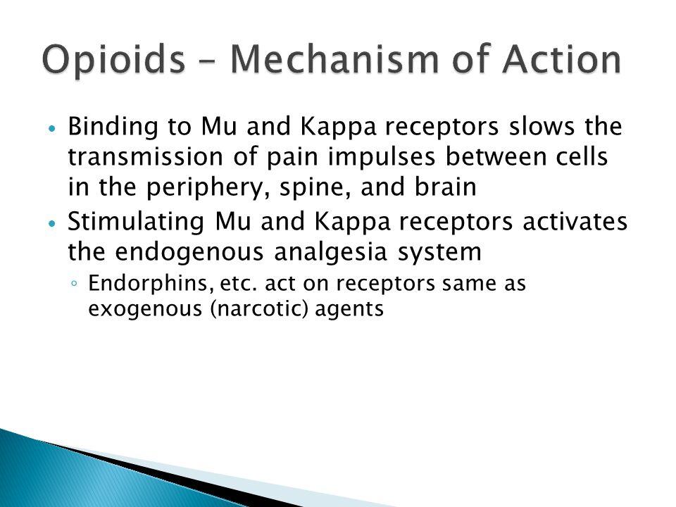 Opioids – Mechanism of Action