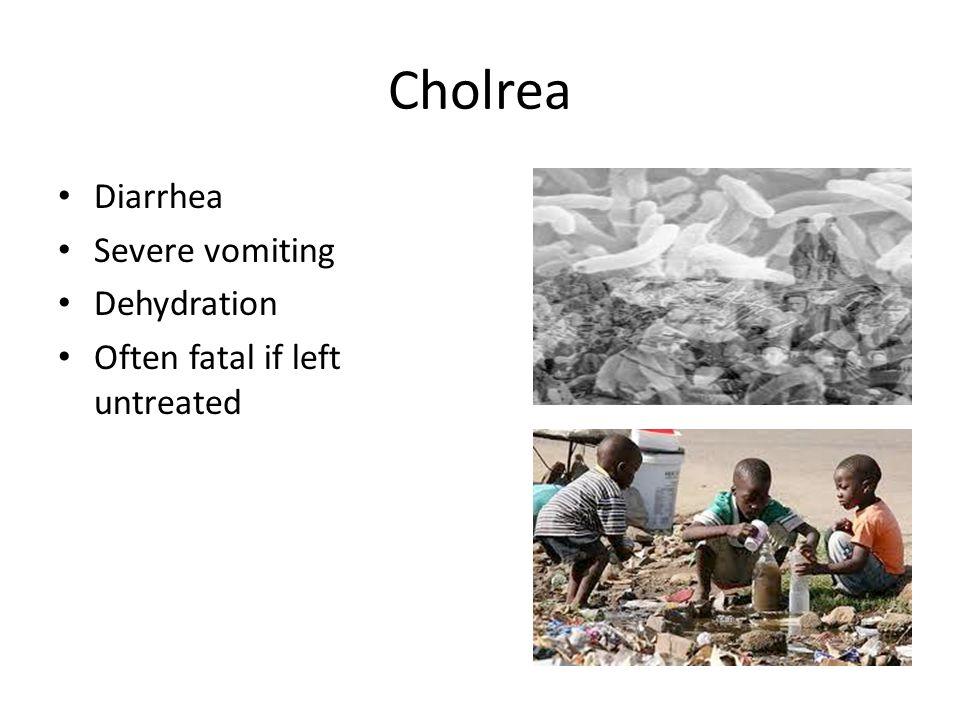 Cholrea Diarrhea Severe vomiting Dehydration