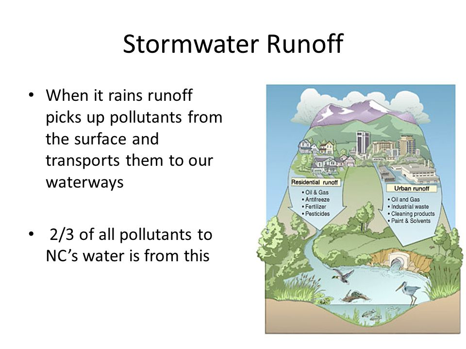 Stormwater Runoff When it rains runoff picks up pollutants from the surface and transports them to our waterways.
