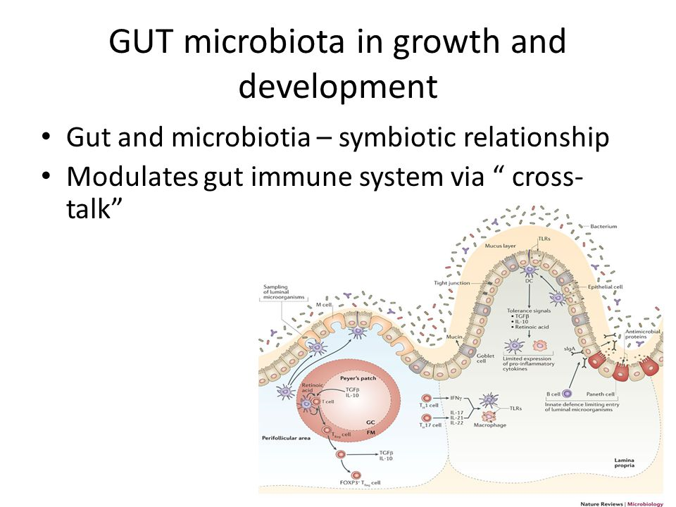 GUT microbiota in growth and development