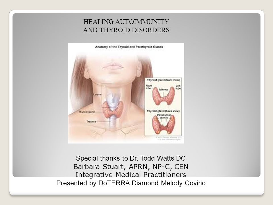 HEALING AUTOIMMUNITY AND THYROID DISORDERS