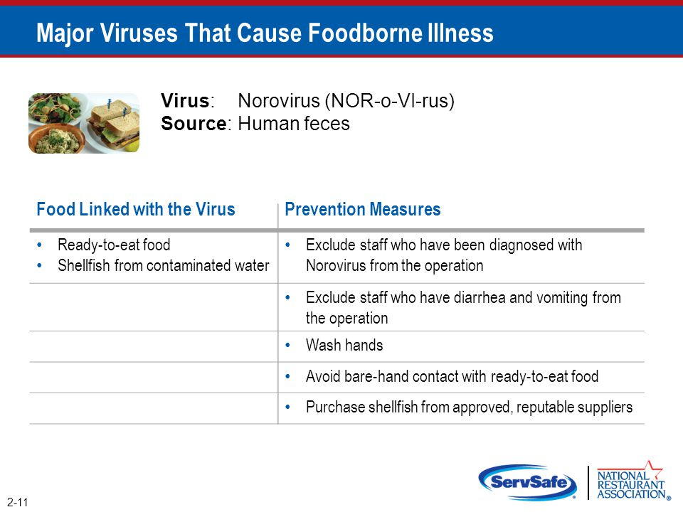 Major Viruses That Cause Foodborne Illness