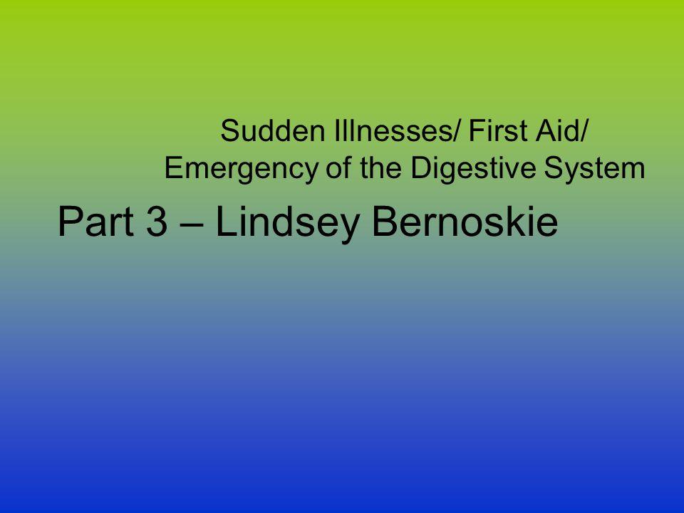 Part 3 – Lindsey Bernoskie
