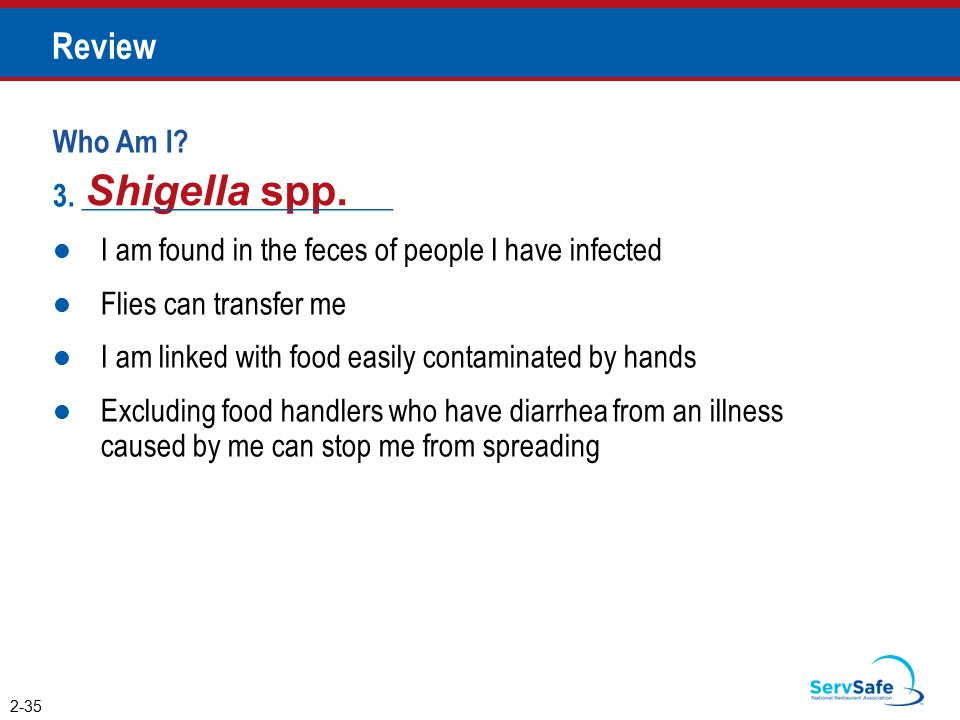 Shigella spp. Review Who Am I 3. _____________________