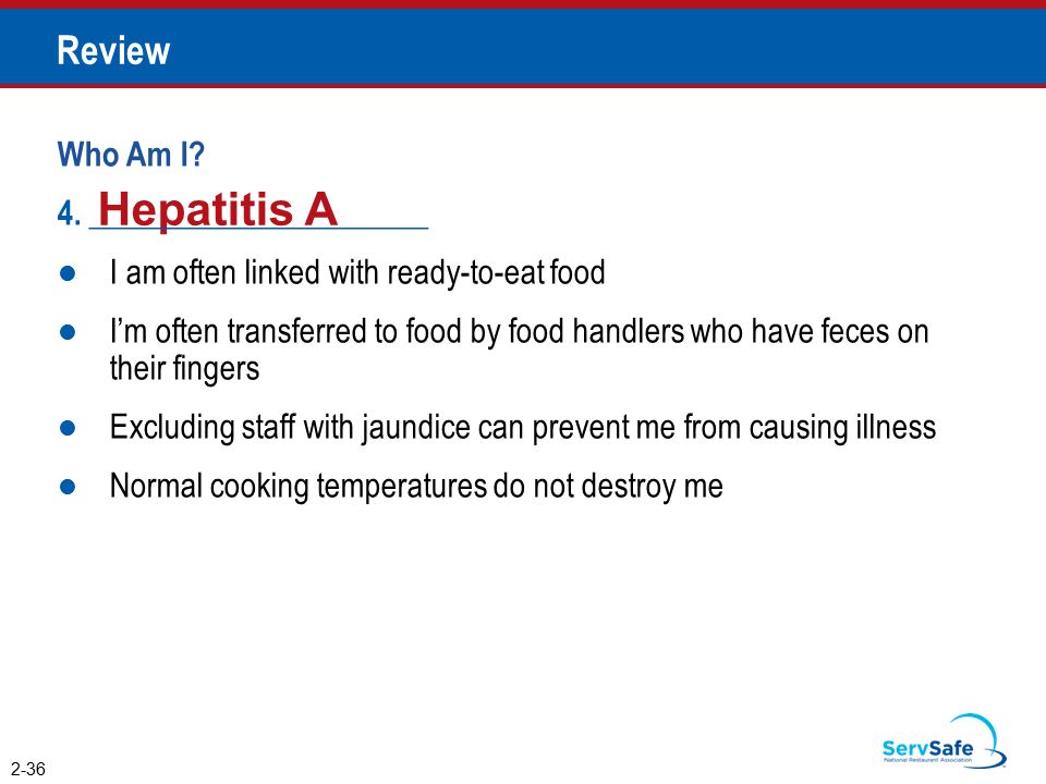 Hepatitis A Review Who Am I 4. _____________________