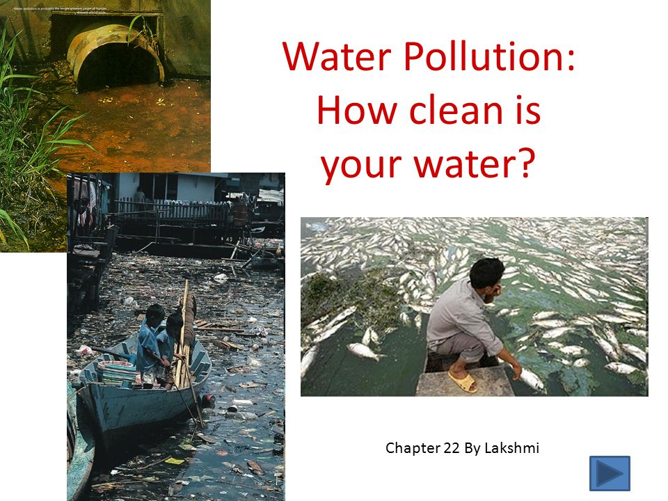 Water Pollution: How clean is your water