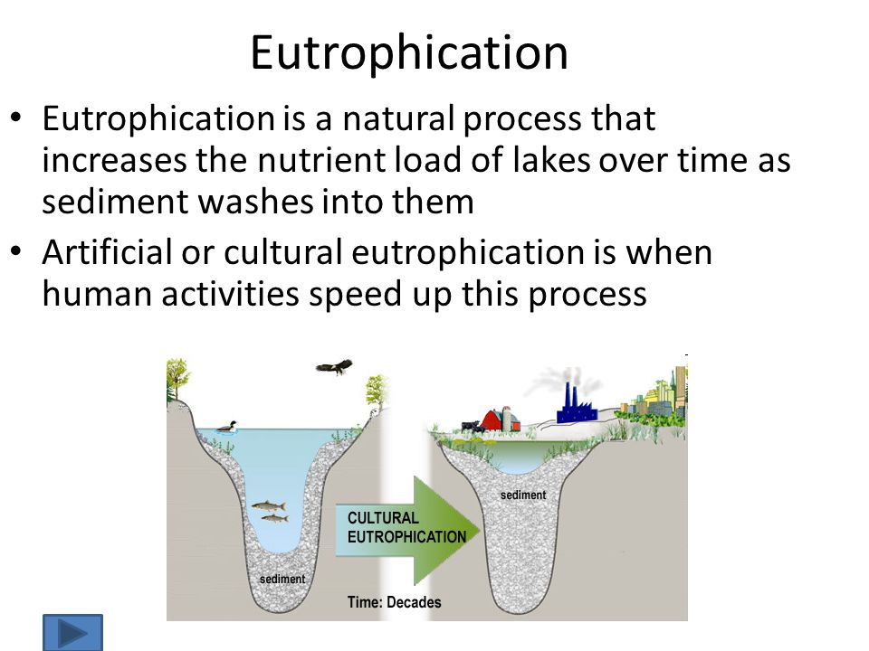 Eutrophication Eutrophication is a natural process that increases the nutrient load of lakes over time as sediment washes into them.