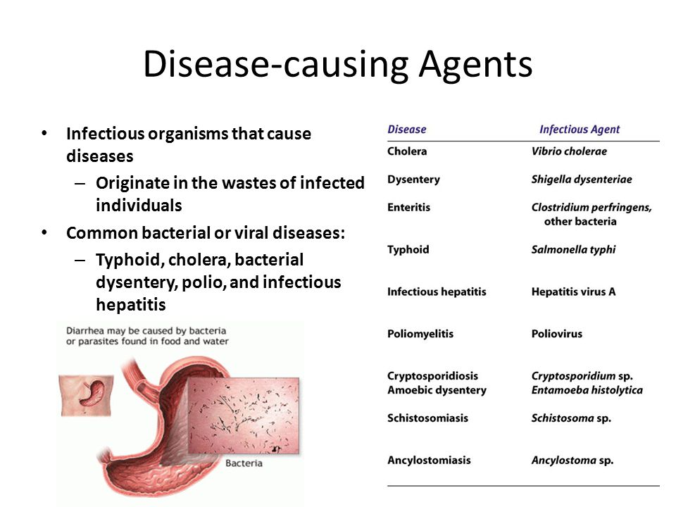 Disease-causing Agents