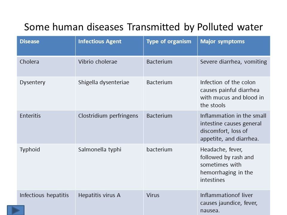 Some human diseases Transmitted by Polluted water