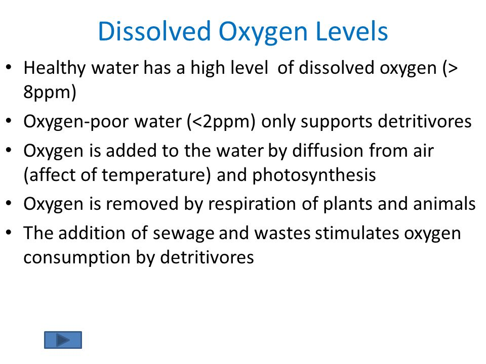 Dissolved Oxygen Levels