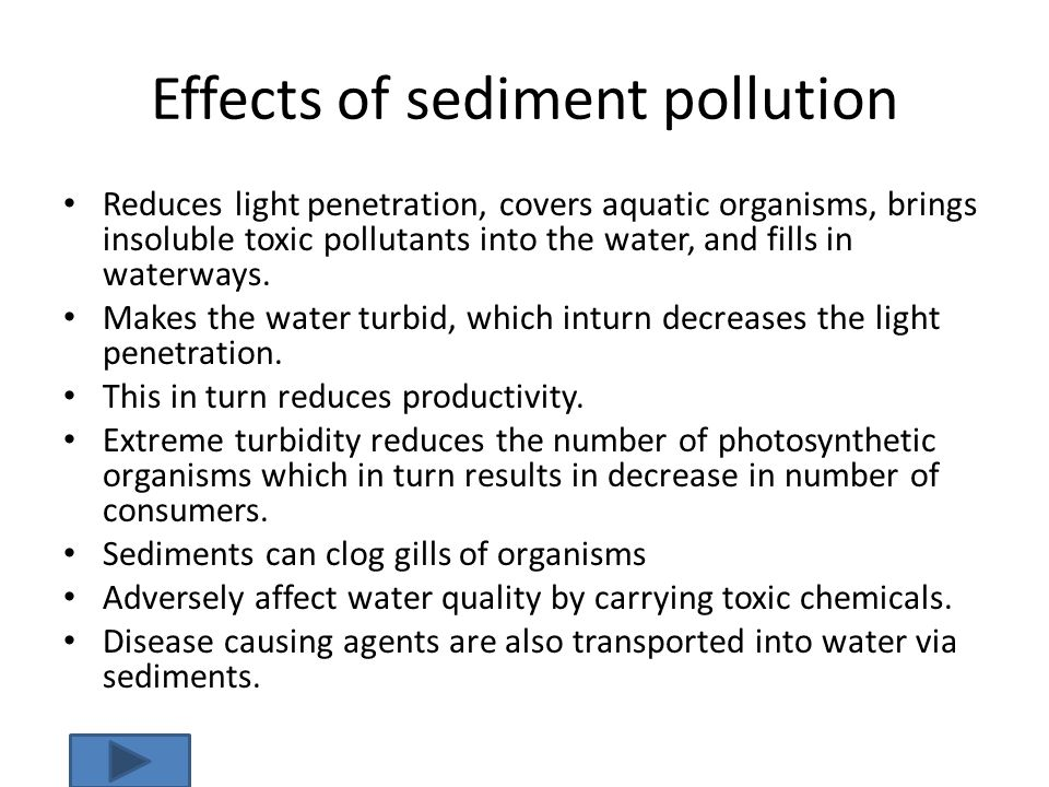 Effects of sediment pollution