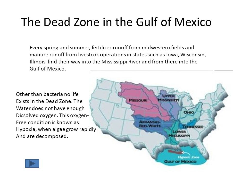 The Dead Zone in the Gulf of Mexico