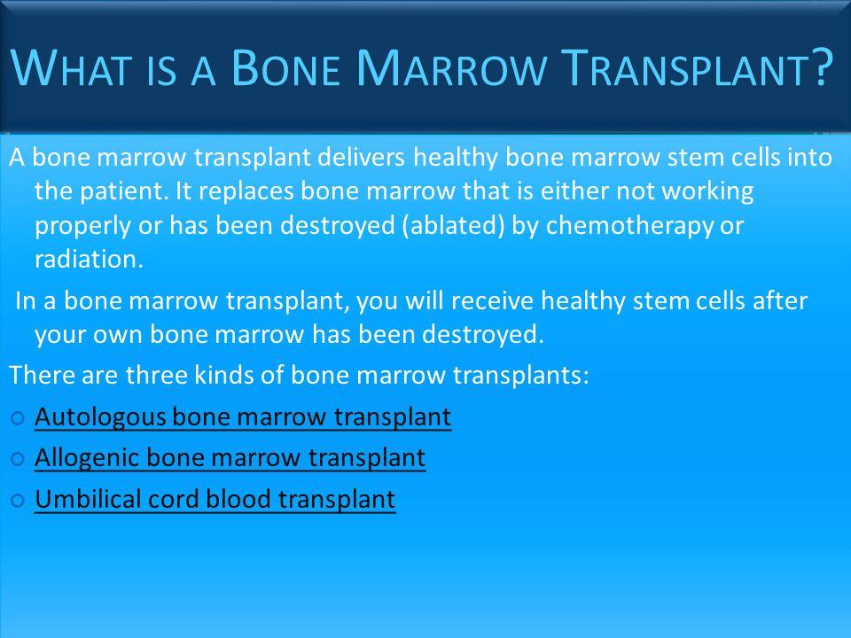 What is a Bone Marrow Transplant