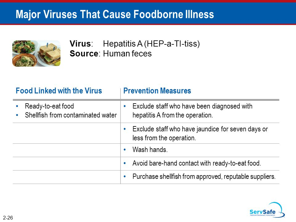 Major Viruses That Cause Foodborne Illness