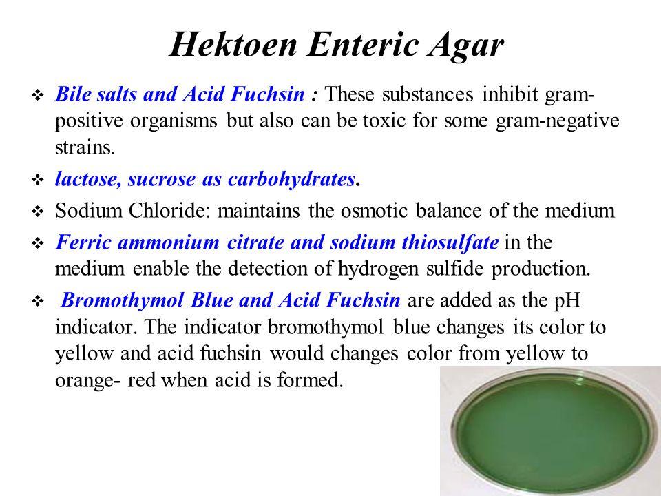 Hektoen Enteric Agar