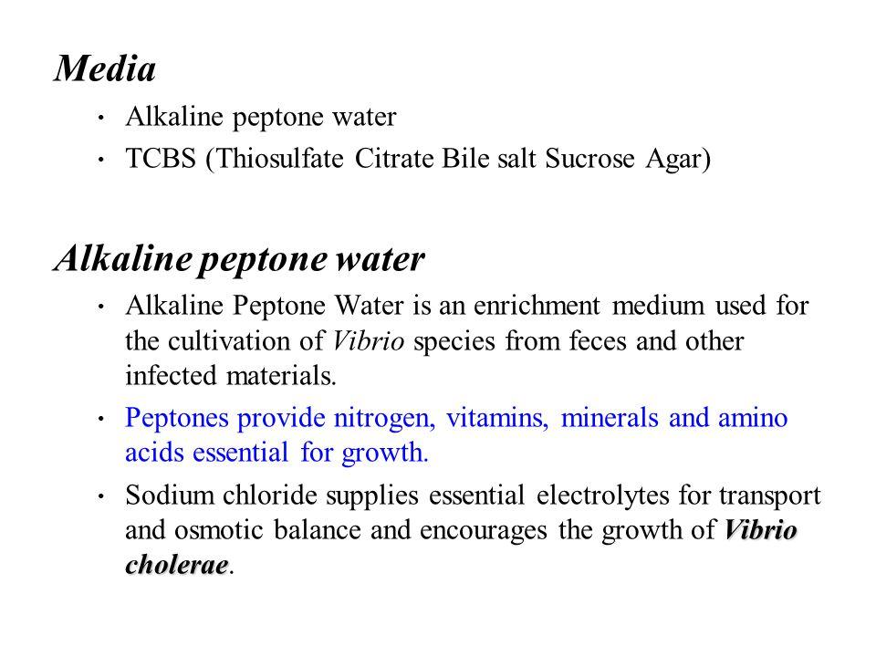Media Alkaline peptone water