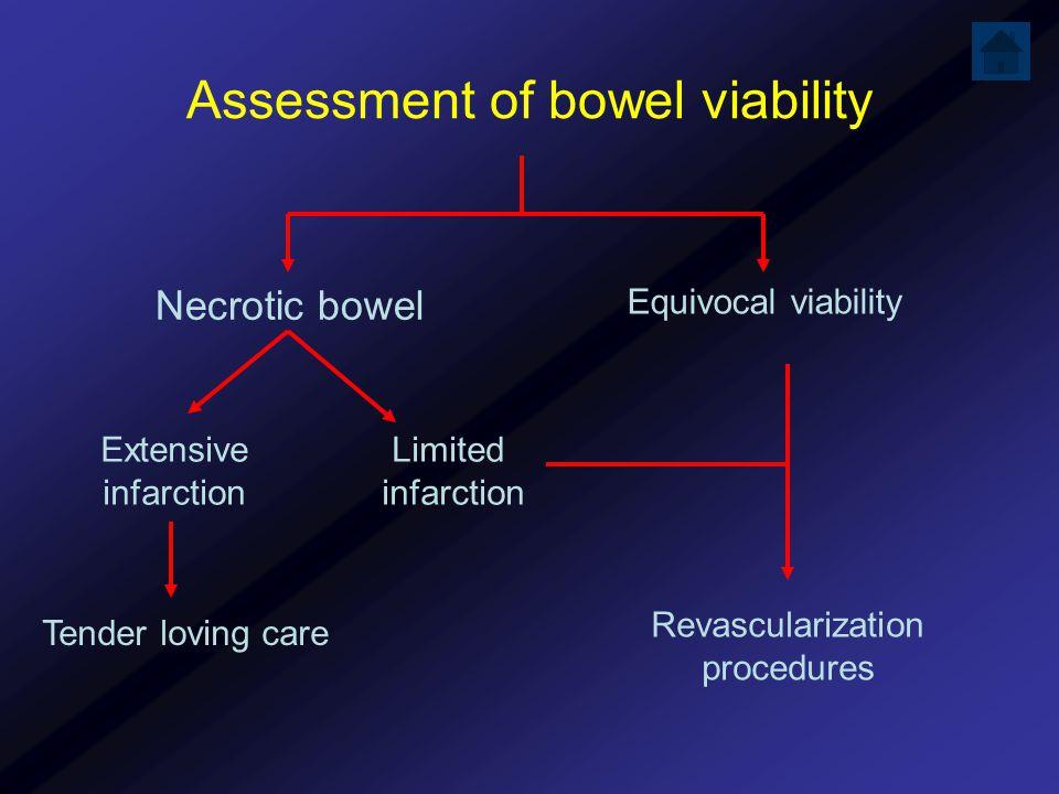 Assessment of bowel viability