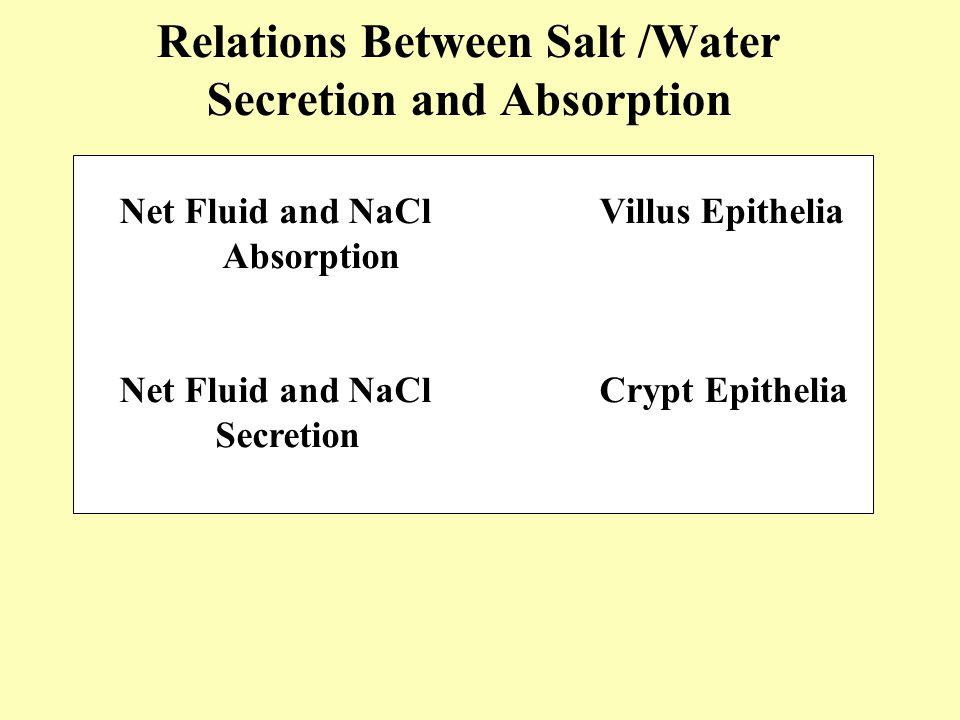 Relations Between Salt /Water Secretion and Absorption