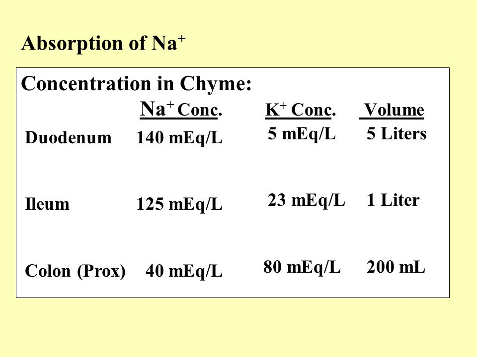 Concentration in Chyme: Na+ Conc. K+ Conc. Volume
