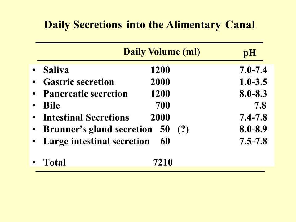 Daily Secretions into the Alimentary Canal