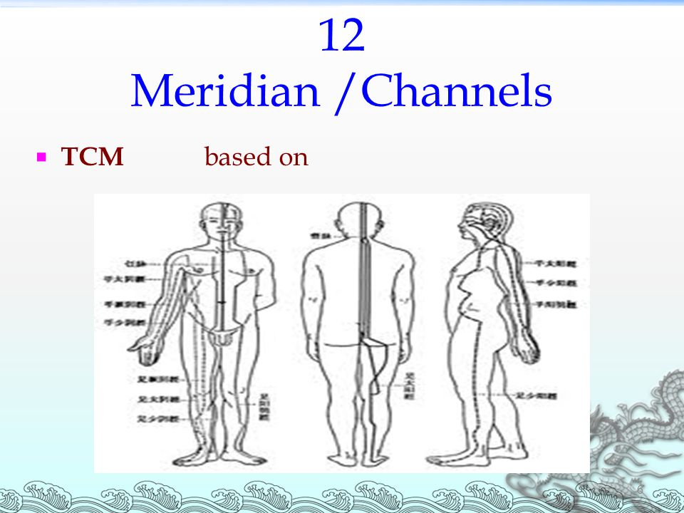 12 Meridian /Channels TCM based on