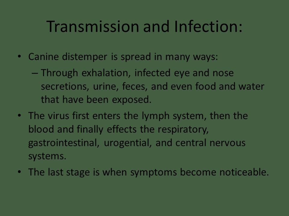 Transmission and Infection: