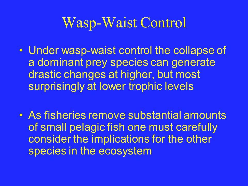Wasp-Waist Control