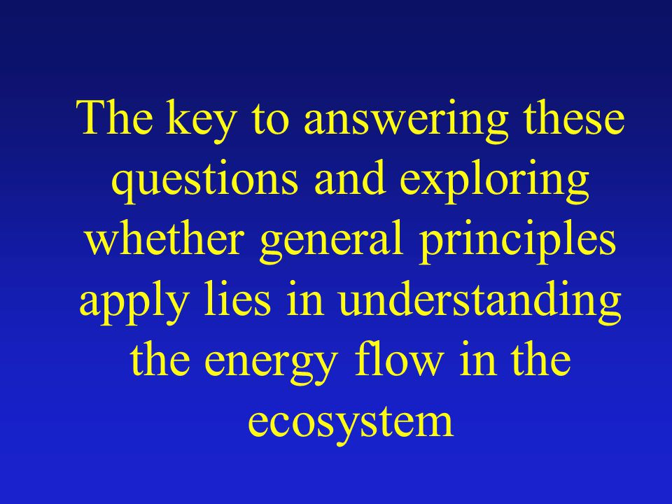 The key to answering these questions and exploring whether general principles apply lies in understanding the energy flow in the ecosystem