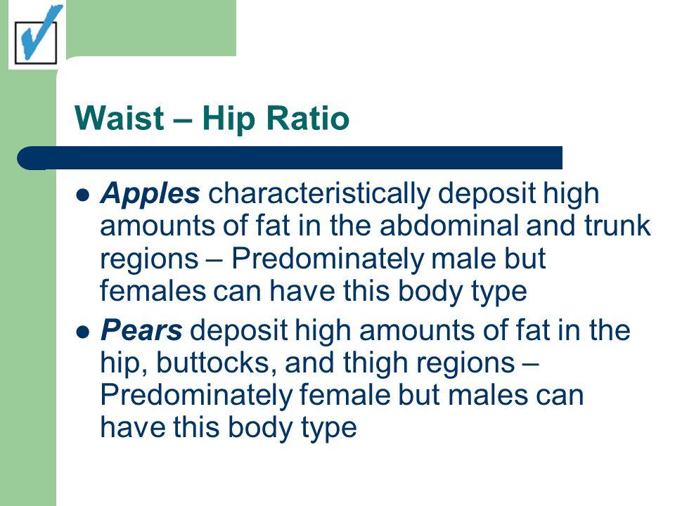 Waist – Hip Ratio