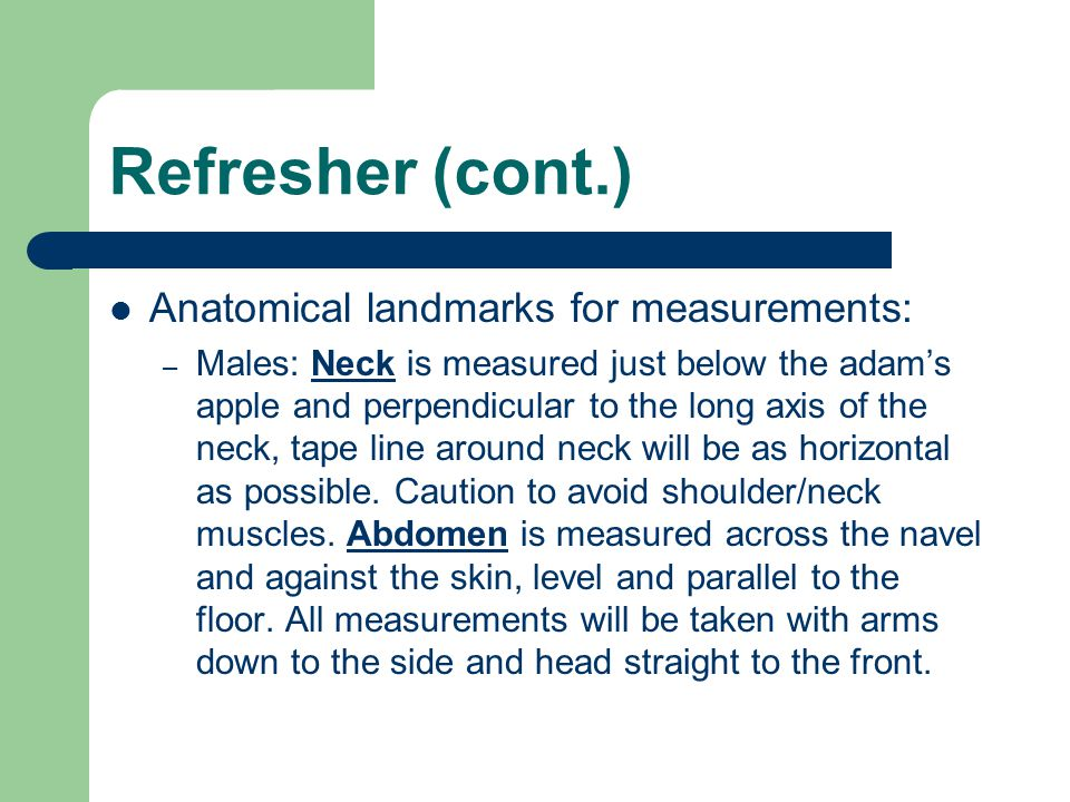 Refresher (cont.) Anatomical landmarks for measurements: