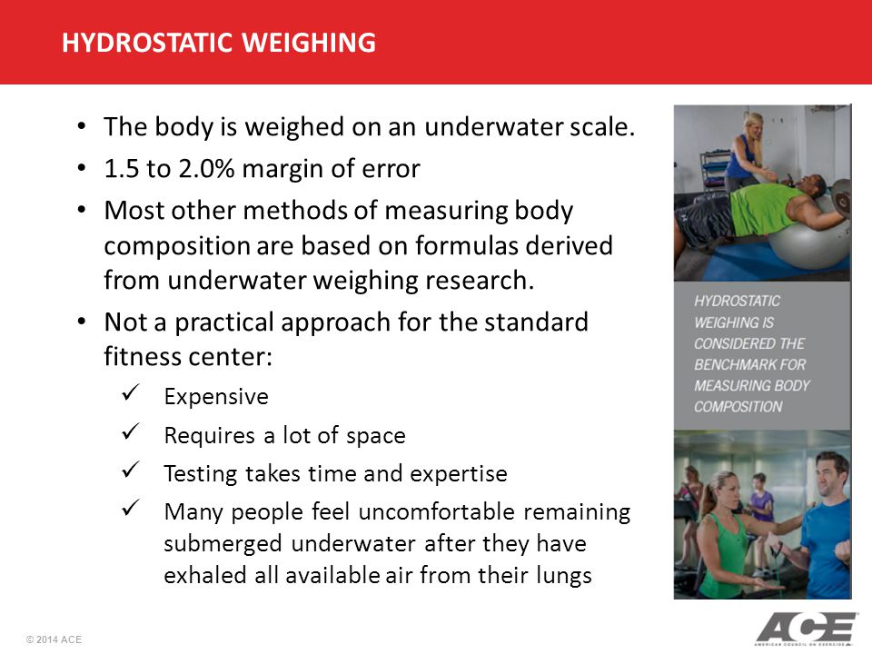 HYDROSTATIC WEIGHING The body is weighed on an underwater scale.