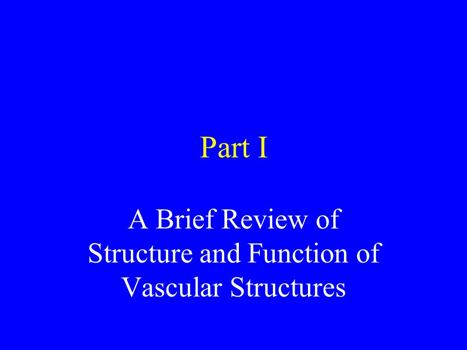 A Brief Review of Structure and Function of Vascular Structures