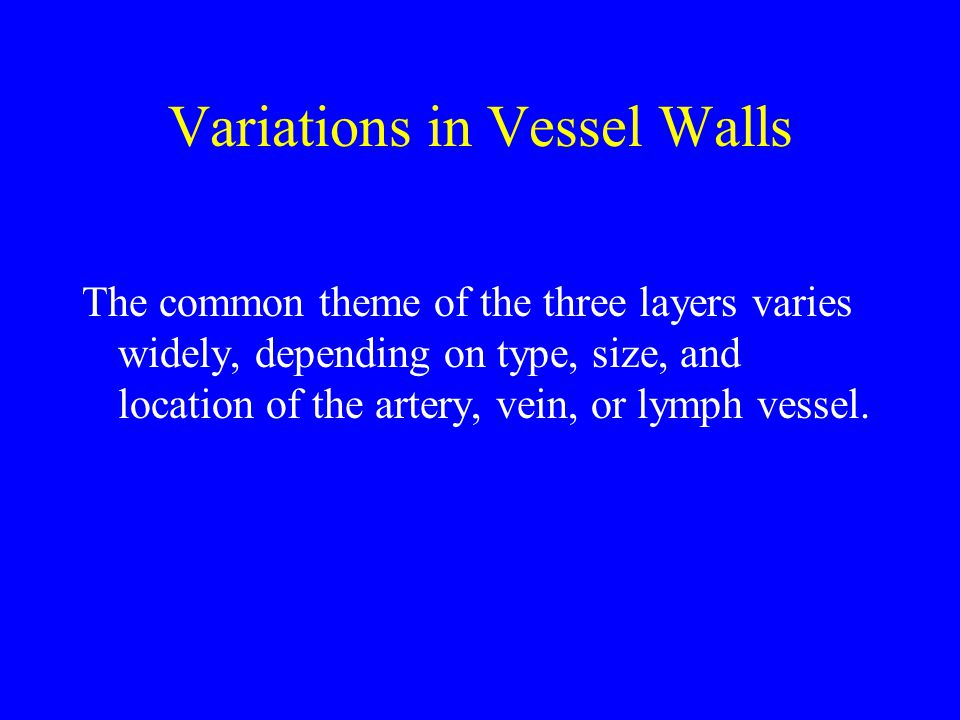 Variations in Vessel Walls