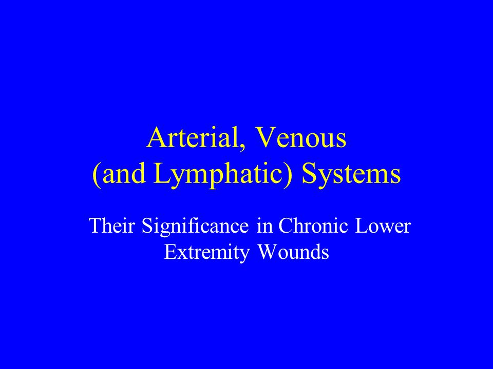 Arterial, Venous (and Lymphatic) Systems
