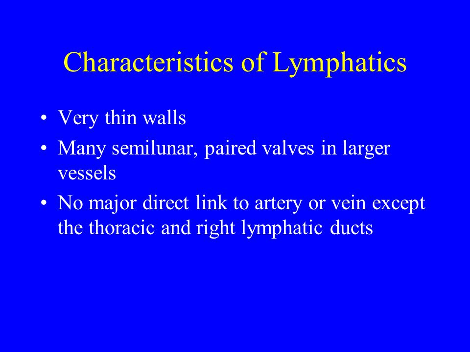 Characteristics of Lymphatics