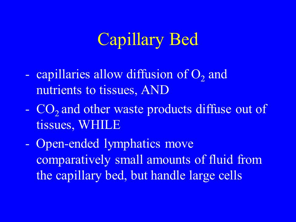 Capillary Bed capillaries allow diffusion of O2 and nutrients to tissues, AND. CO2 and other waste products diffuse out of tissues, WHILE.