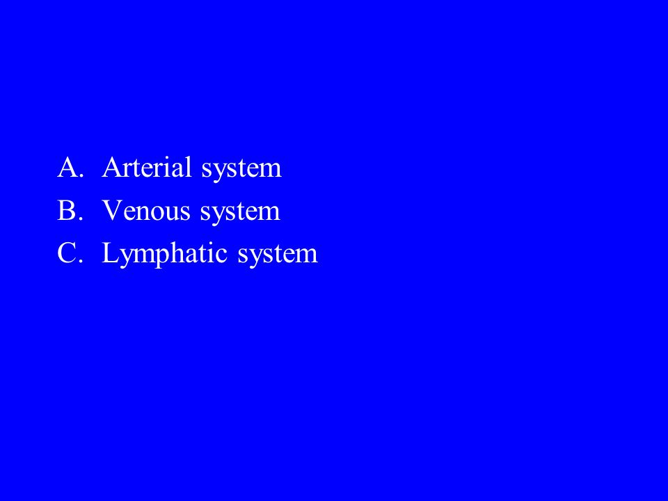 Arterial system Venous system Lymphatic system
