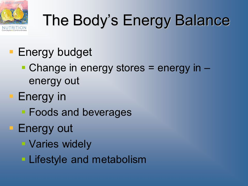 The Body's Energy Balance