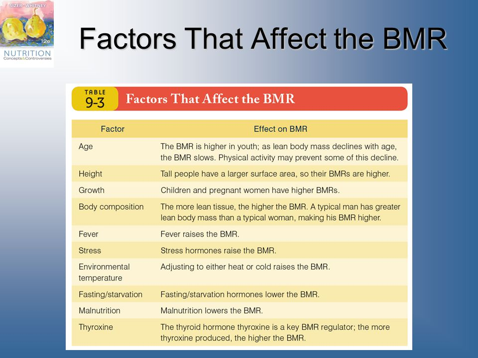 Factors That Affect the BMR