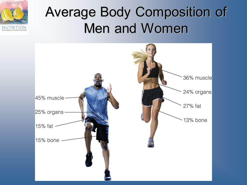 Average Body Composition of Men and Women