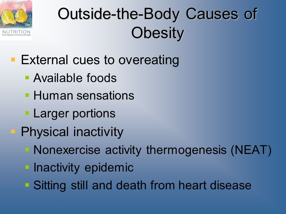 Outside-the-Body Causes of Obesity